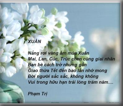 Viet Clips
